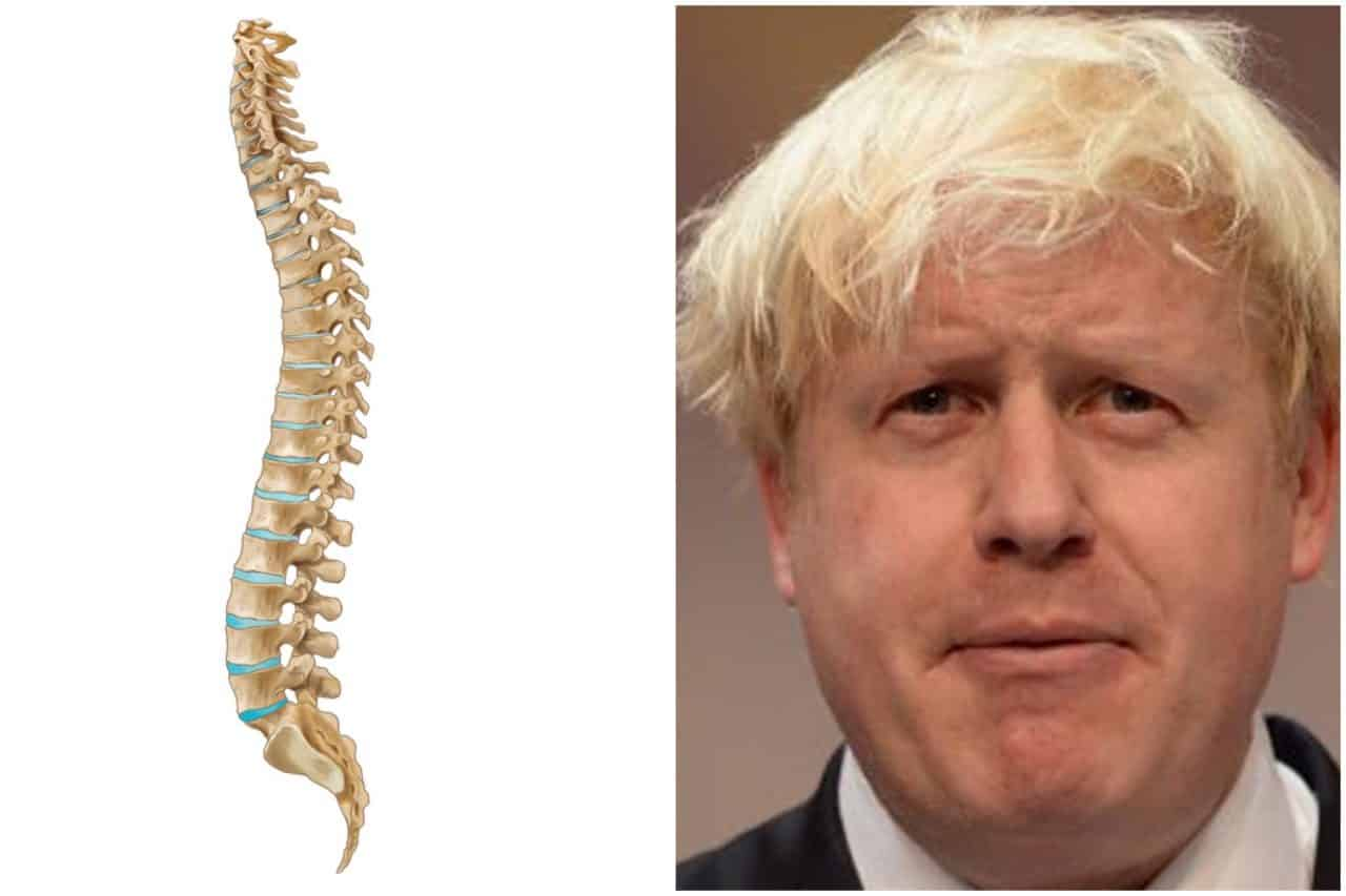 BORIS JOHNSON'S SPINE announces intention to run for TORY PARTY LEADER