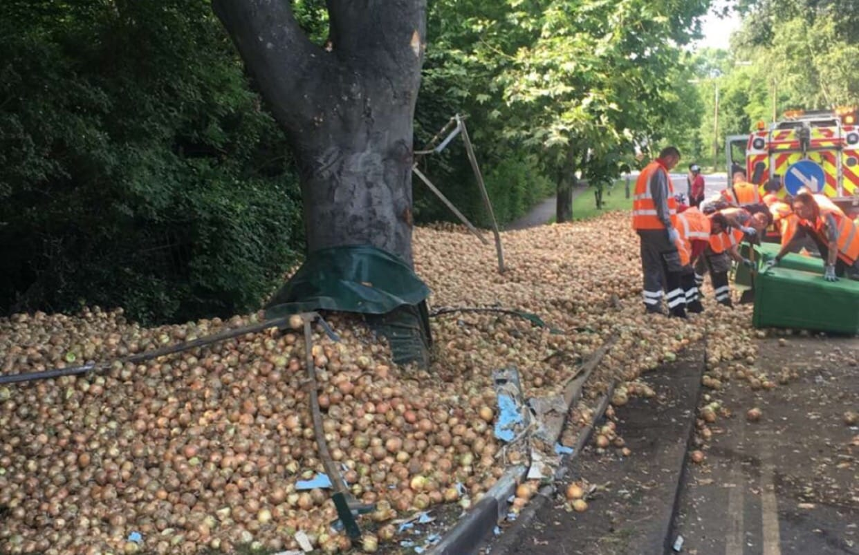 OUTRAGE after locals STEAL ONIONS from overturned lorry in Southend
